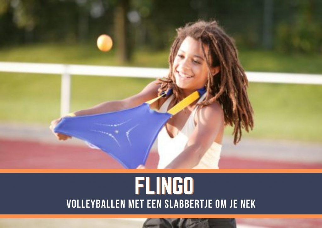 Flingo Teamgames Zeskamp